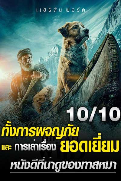 ดูหนัง The Call of the Wild (2020) เสียงเพรียกจากพงไพร
